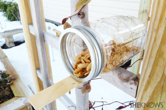 Make Your Own Squirrel Feeder | inspired by The Nut Job | #squirrels #diy #squirrelfeeder #nuts