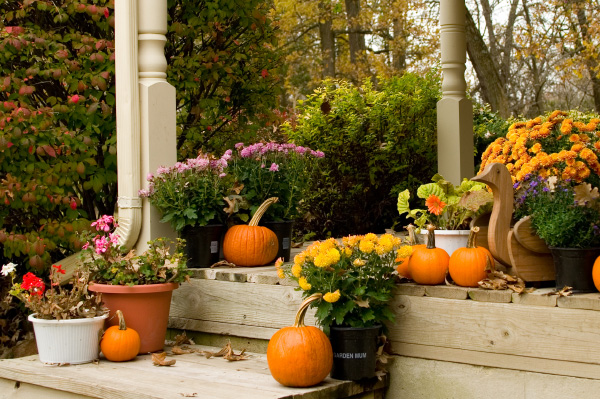 Fall porch with mums