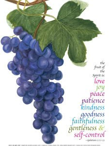 Fruit Of The Spirit Print CCO Cards Amp Prints
