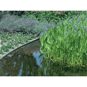ecolat enroulee gris 25m x 19cm x 0 7cm bordure de bassin ecoo