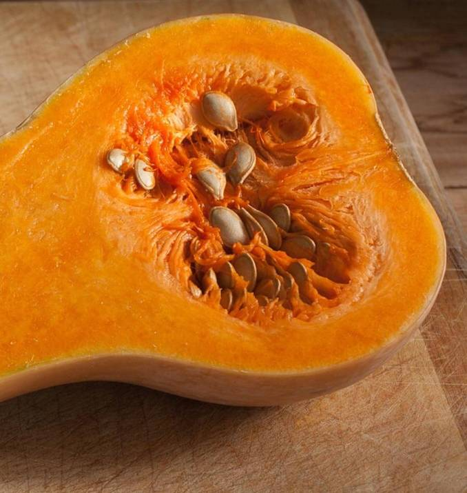 Waltham Organic Butternut Squash Seeds – West Coast Seeds