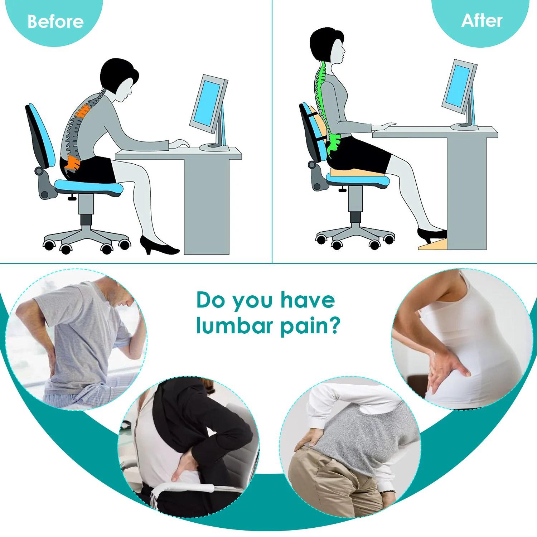 feagar lumbar support pillow back