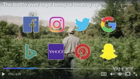 yahoo finance advertisers cannabis cbd