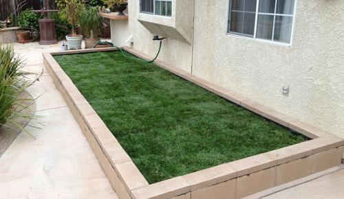 backyard dog run ideas designs