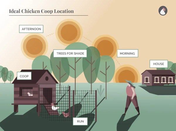 Ideal Chicken Coop Location