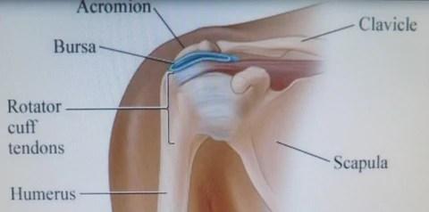 pillow for shoulder pain