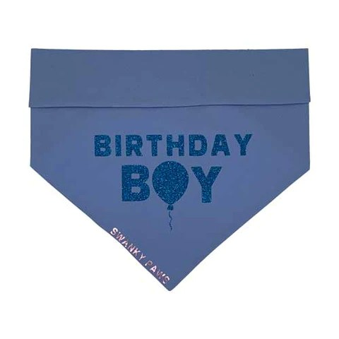 Birthday Dog Bandana Blue Boy Australia