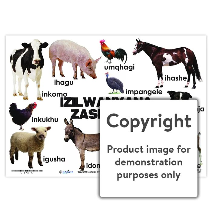 izilwanyana zasefama farm animals isixhosa