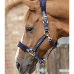 Premier Equine Fleece Padded Horse Headcollar Bellisle Equestrian Store Ni