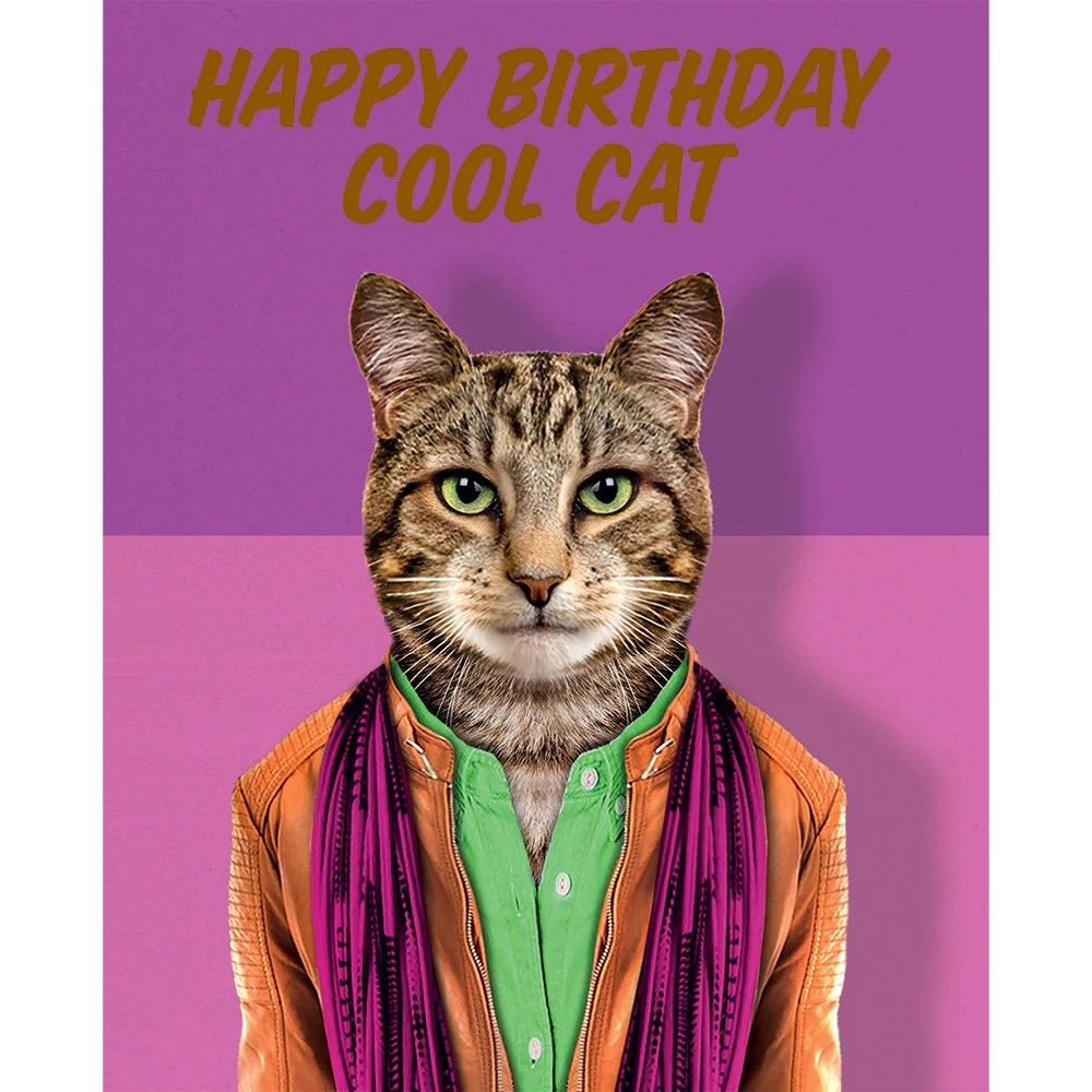 Birthday Card Happy Birthday To One Cool Cat