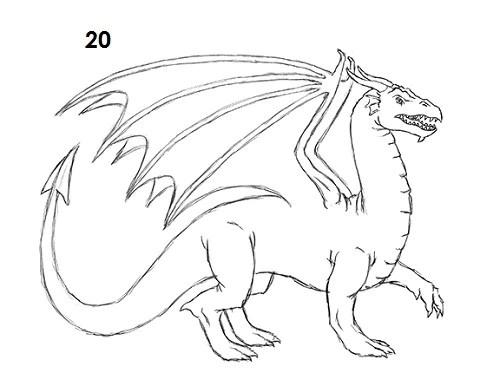 Comment Dessiner Un Dragon Dragonys
