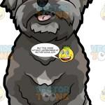 A Super Cute Shih Tzu Puppy Clipart Cartoons By Vectortoons