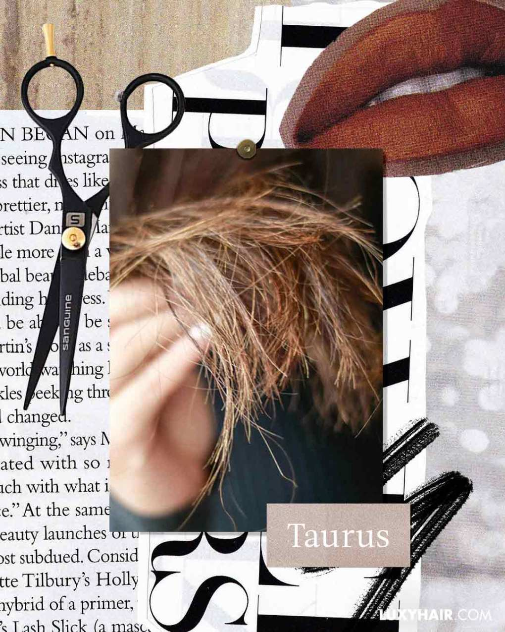 Zodiac Hair Sins