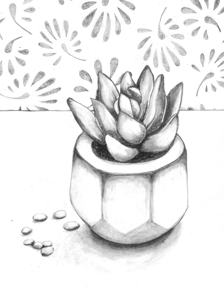 Succulent Sketch: How to Draw with a Photo Reference — Craft-e-Corner