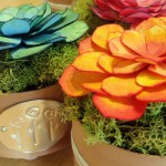 Succulent Flower Favor Colorful Table Decor For Your Next Celebration Craft E Corner