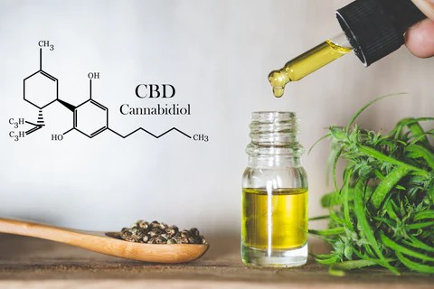 An eyedropper, dropping CBD oil back into a small glass container with some fresh Hemp leaves to the side, a wooden spoon full of Hemp seeds, and part of a drawing of the chemical structure of Cannabidiol in the background.