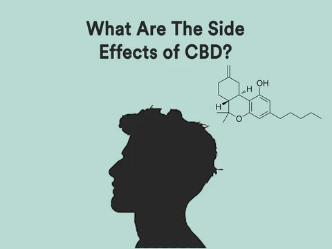 A silhouette of the side of a man's head on a light green background with the words: What are the side effects of CBD? as well as part a drawing of a chemical structure.