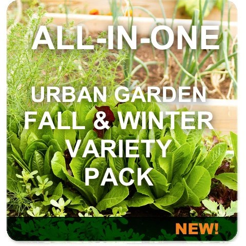 All In One Fall Winter Urban Garden Variety Pack Seedsnow Com