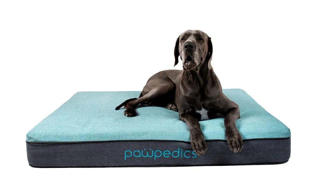 Extra Large Orthopedic Dog Bed In Australia