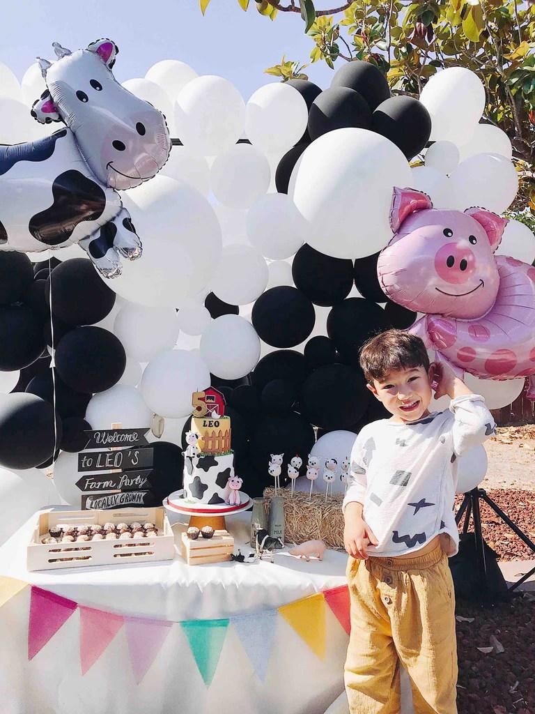 Modern Farm Birthday Party Momo Party