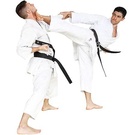 Karate Gi Uniform Seishin International