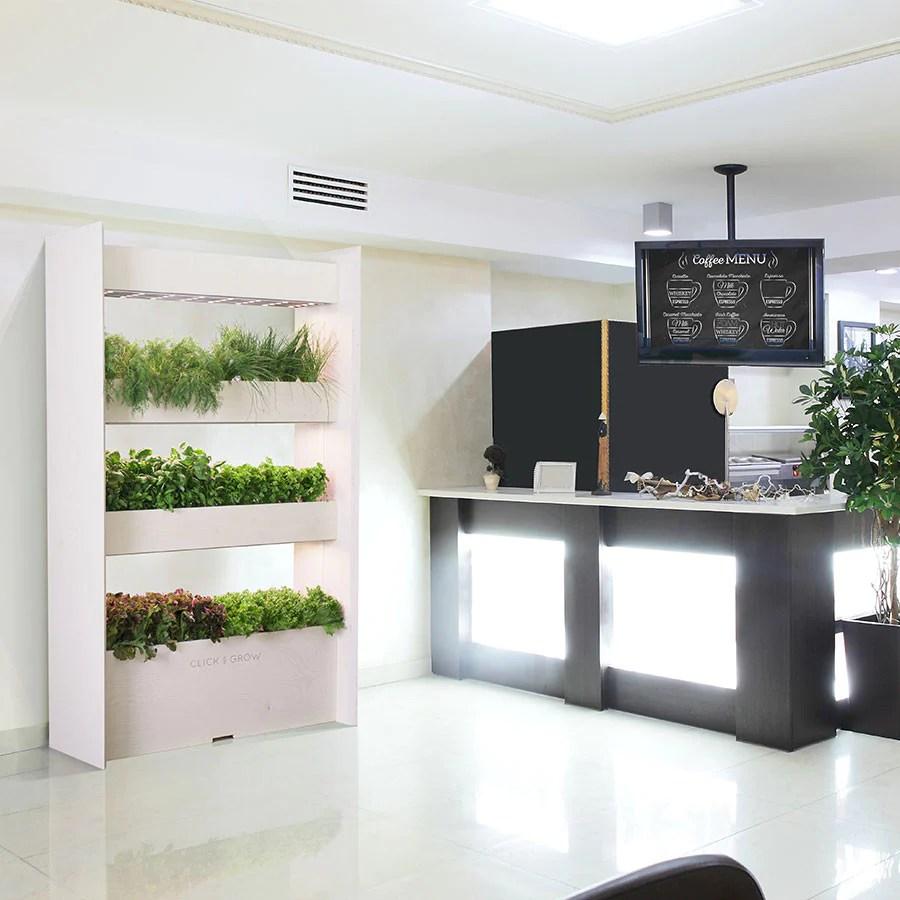 Indoor Herb Wall