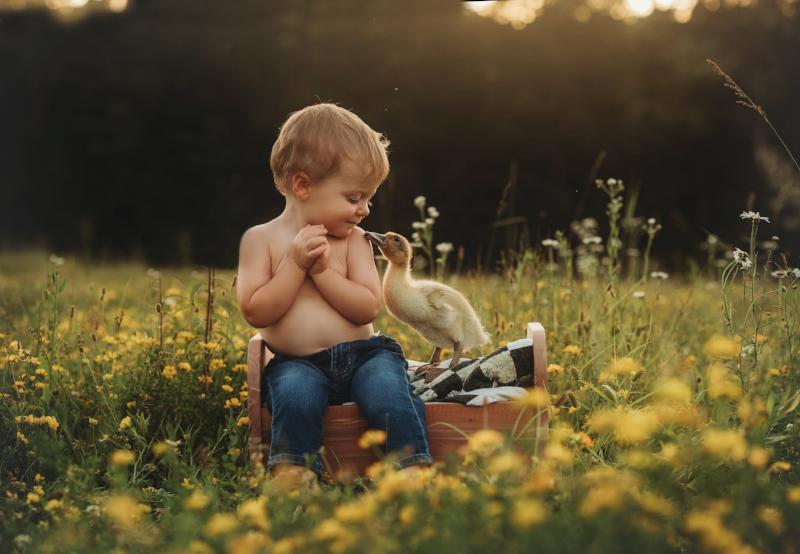 Andrea Martin Photography - Child & Family Photographer