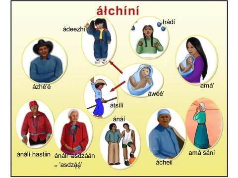 alchini poster family relationship p