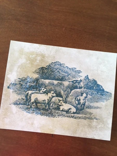 Art Prints Farm Living Art Collection Cow And Sheep