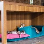 Luxury Dog Beds By Charley Chau Charley Chau Luxury Dog Beds Blankets