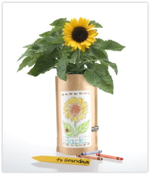 Kids Garden Kit, Sunflower | Garden Kit