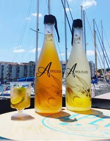 Duo de bouteilles Appolinaire