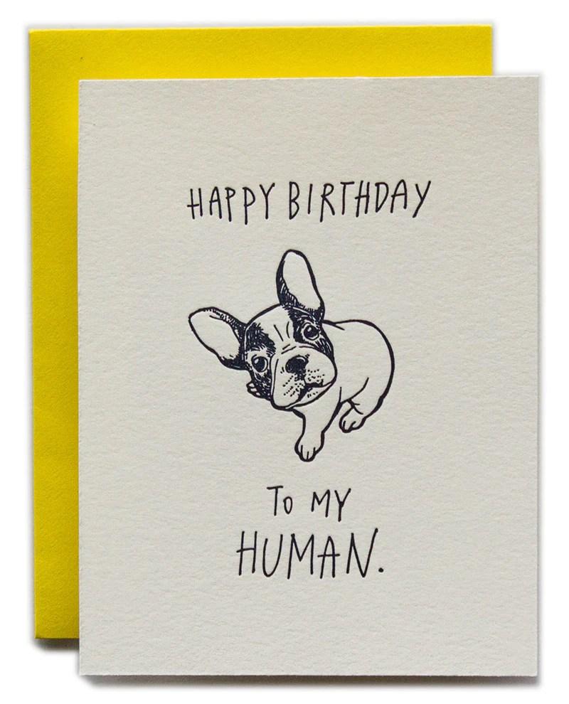 Happy Birthday To My Human Dog Version Ladyfingers Letterpress