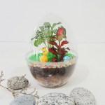 Kids Closed Terrarium Egg Acrylic Diy Kit Make Your Own