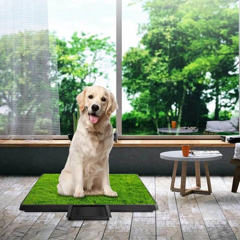 Pet Toilet Litter Grass Patch For Dogs with Tray