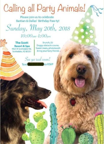 dog themed birthday party ideas how to