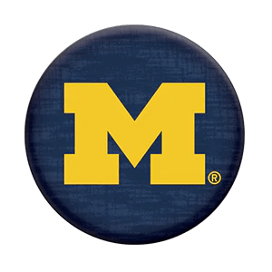 Image result for michigan logo