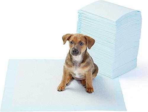 paquet de 100 tapis absorbants educatif pour chien 60 cm x 60 cm