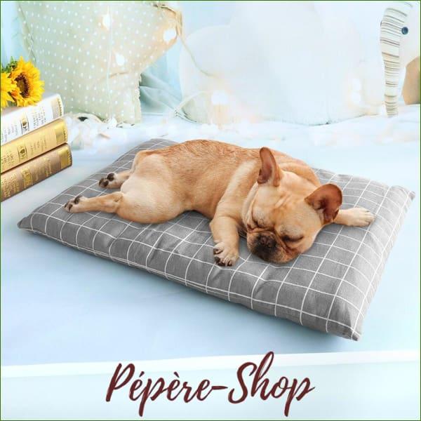 coussin pour chien pilo dehoussable design pas cher