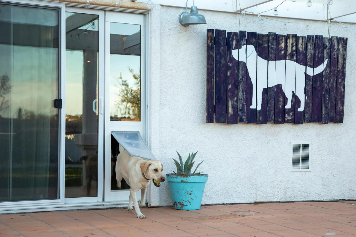7 Steps On How To Install A Dog Door In A Sliding Glass Door