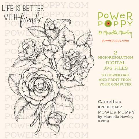Camellias Digital Stamp Set Power Poppy By Marcella Hawley