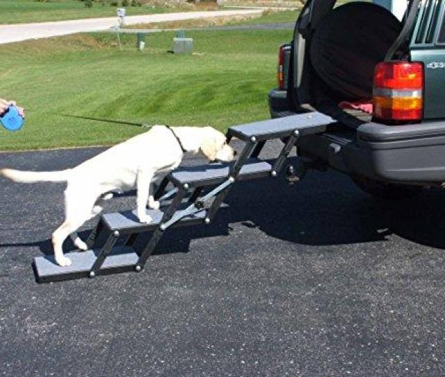 Pet Loader Light  Steps