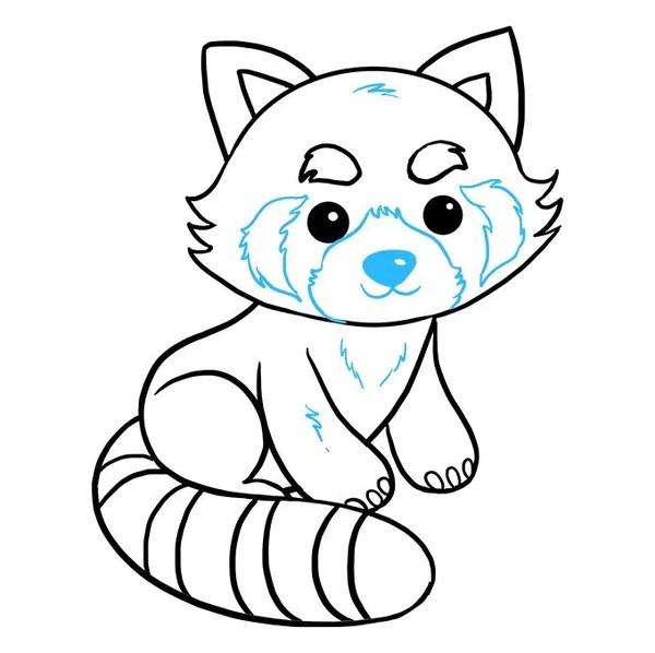 How To Draw A Red Panda Univers De Panda