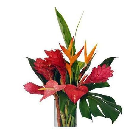 Fresh Hawaiian Flowers   Hawaiian Leis delivered Nationwide Hawaiian Flowers Bouquets