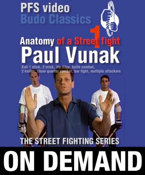 Картинки по запросу Paul Vunak Street Fighter Series