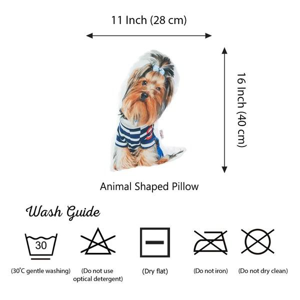 pillows phonicals