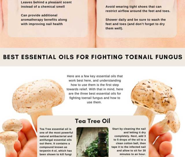 Essential Oils And Toenail Fungus Info Graphic