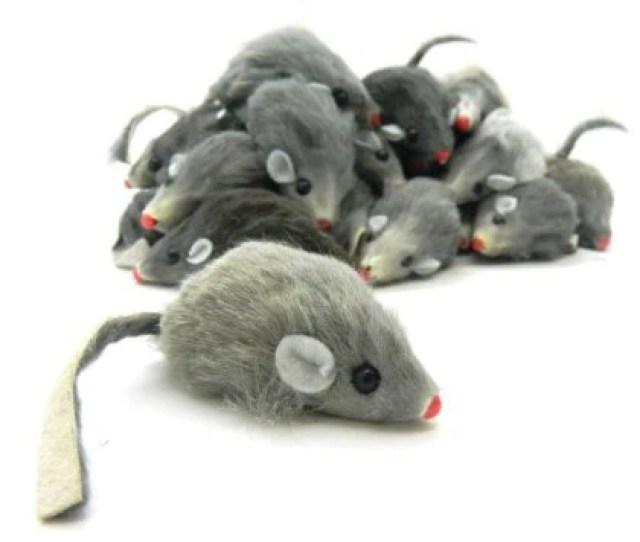 Cruelty Free Cat Toys