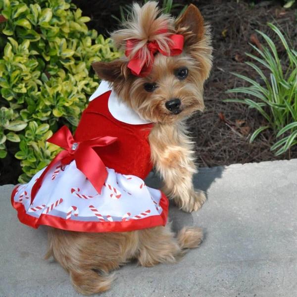 Candy Canes Christmas Dog Dress DinkyDogClub