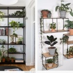 Styling Your Home With House Plants Do Shop